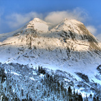 Snow-covered Yak, Yak Peak