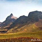 RHINO, The Peak, Rhino Peak