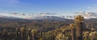 Nevados national Park, Nevado del Ruiz photo