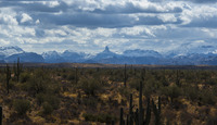 Contrasting Landscapes, Weaver's Needle photo