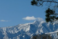 Winter shot of Mount Graham, AZ photo