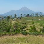 Landscape view of Penanggungan(Pawitra) Mountain, Mount Penanggungan