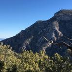 Clark Mountain natural arch, Clark Mountain (California)