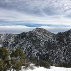 Clark Mountain, Clark Mountain (California)