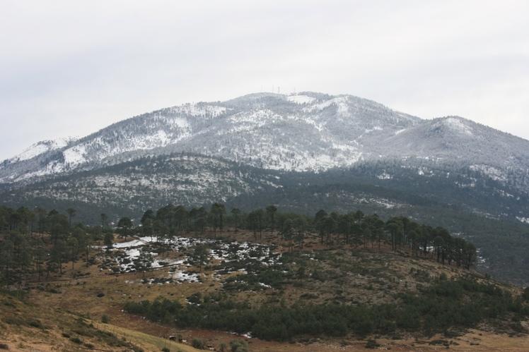 Cerro Potosi weather