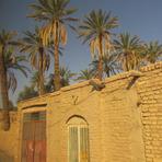 naser ramezani shahdad region, Hazaran