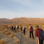 naser ramezani nayband protected area, Mount Binalud