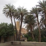 naser ramezani naayband village, Mount Binalud