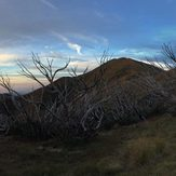 Feathertop Distant, Mount Feathertop
