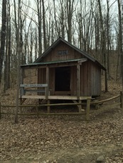 Birch Knob Shelter on Pine Mountain Trail, Pine Mountain (Appalachian Mountains) photo
