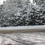 Snowfall 25 June 2016, Mount Donna Buang