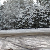 Snowfall 25 June 2016, Mount Donna Buang