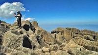 Pico das Agulhas Negras photo