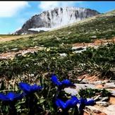 Mt Olympus Hellas, Mount Olympus