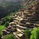 naser ramezani sare seyed agha village