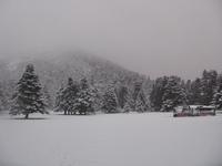 .., Mount Helicon photo