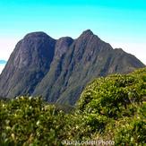 Primeiro avistamento do Pico Paraná na trilha do Pico Itapiroca