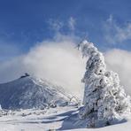 view to the peak, Snezka or Sněžka