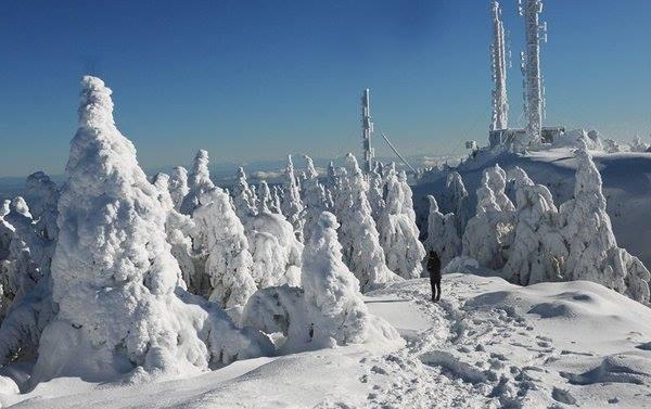 Benson Summit, Mount Benson (British Columbia)