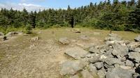 Mt. Hale summit, Mount Hale (New Hampshire) photo
