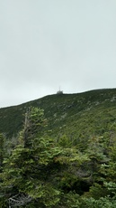 Cannon Summit from Kinsman Ridge Trail, Cannon Mountain (New Hampshire) photo