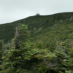 Cannon Summit from Kinsman Ridge Trail, Cannon Mountain (New Hampshire)