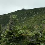 Cannon Summit from Kinsman Ridge Trail, Cannon Mountain (New Hampshire)