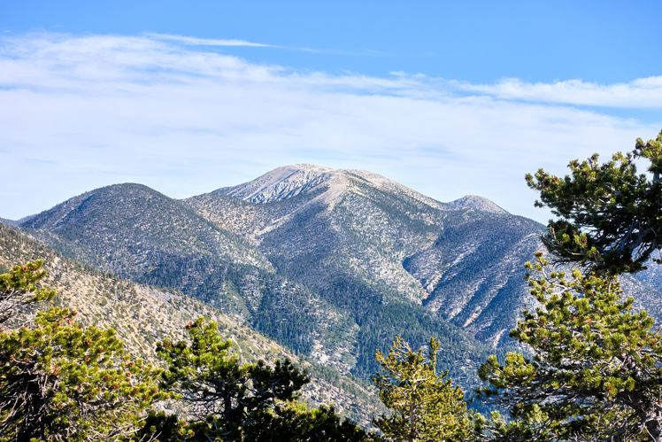 Old Greyback, San Gorgonio