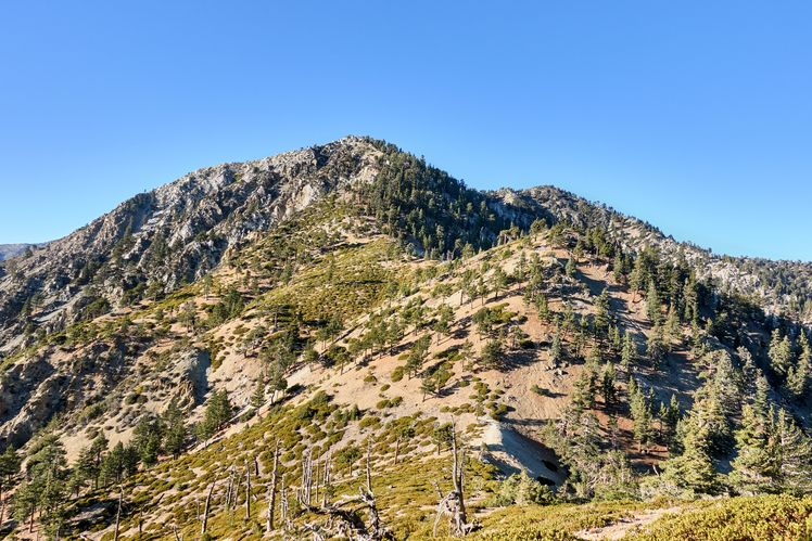 Telegraph Peak (California) weather