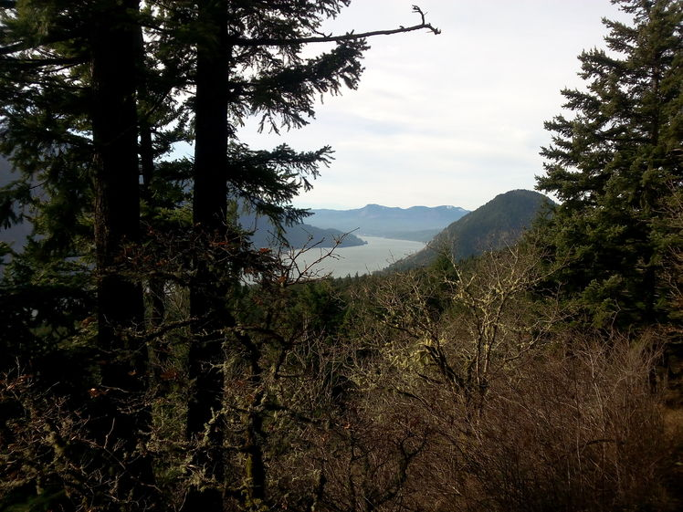 View of Wind Mountain, Dog Mountain