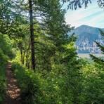 Augspurger Trail #3, Dog Mountain