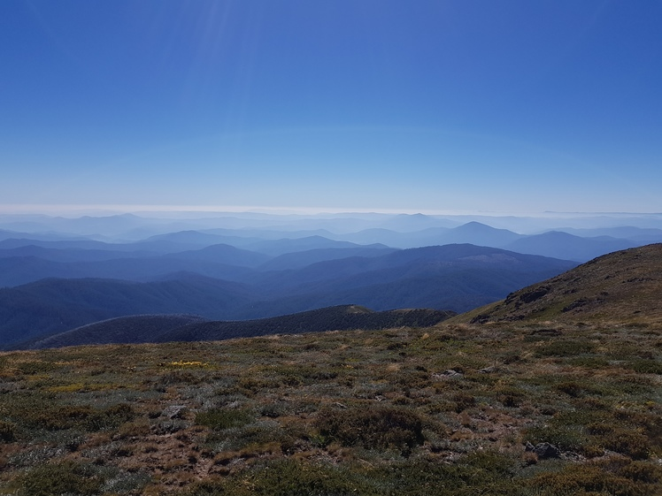 Mount Bogong weather