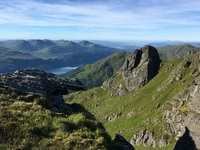 The Cobbler photo