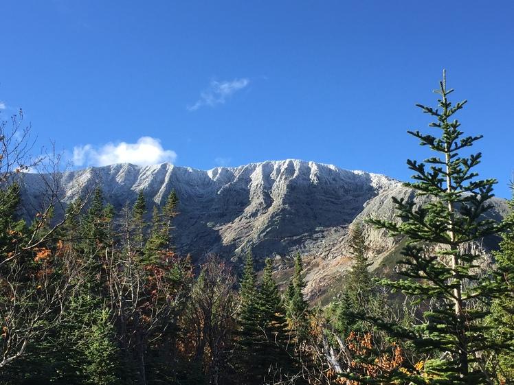 Frosty Tips, Mount Katahdin