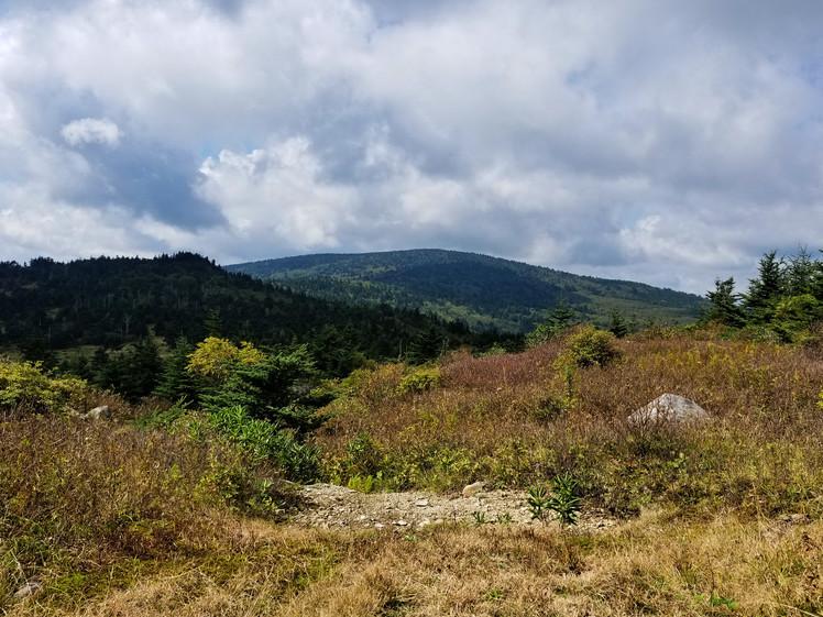 Mount Rogers