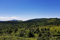 Mount Rogers and Whitetop photo