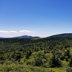 Mount Rogers and Whitetop