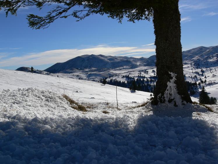 Pogled sa puta na Ljutu Gredu, Vlašić (mountain)