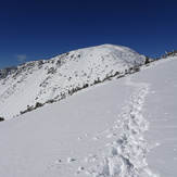 Marching toward Baldy, Mount Baldy (San Gabriel Range)