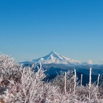 View of Mt Hood in winter, Silver Star Mountain (Skamania County, Washington)