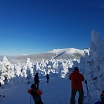 Bluebird, Cannon Mountain (New Hampshire)