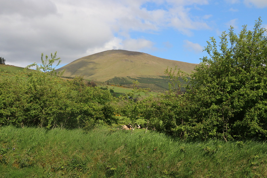 Temple Hill (Ireland) weather