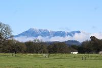 Mount Saint Helena photo