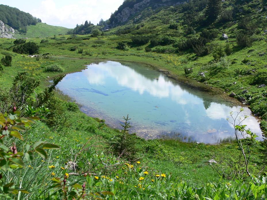 Platno jezero, Treskavica