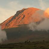 The azorean beauty, Montanha do Pico