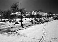 Winter Scene From Mount Hasan Turkey, Hasandag or Hasan Dagi photo