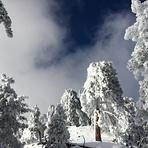 Mount Baldy (San Gabriel Range)