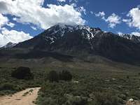Mount Tom, Mount Tom (California) photo