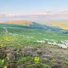 Beacon Hill, Powys