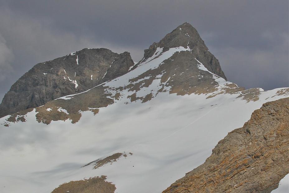 Mt Pelat., Mont Pelat